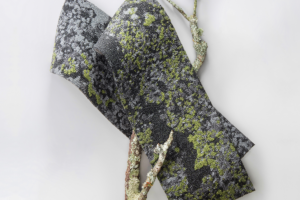 Mohawk Group Debuts the Lichen Collection, designed by Jason F. McLennan