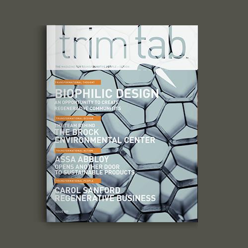 Trim Tab v.29 cover
