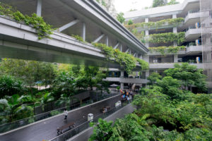 First Annual Stephen R. Kellert Biophilic Design Award Goes to Khoo Teck Puat Hospital