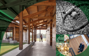 New from Ecotone Publishing: Creating Biophilic Buildings